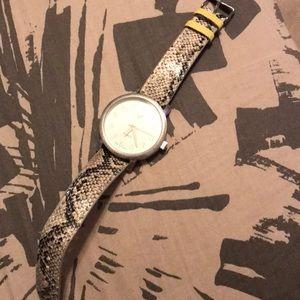 American eagle snake watch